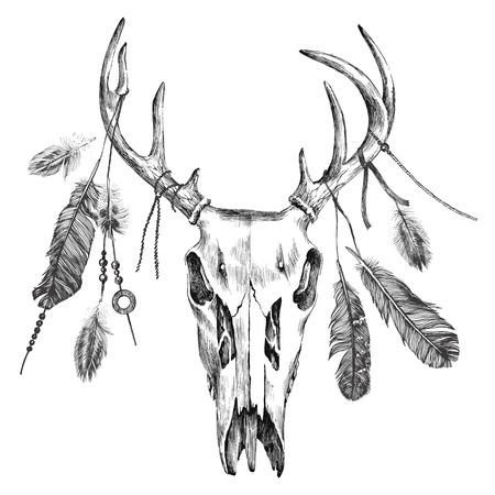 Hand drawn black and white illustration with deer scull and feathers