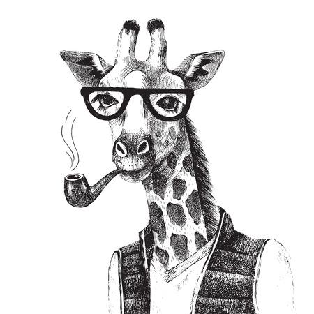 animal head giraffe: Hand drawn Illustration of dressed up giraffe hipster Illustration