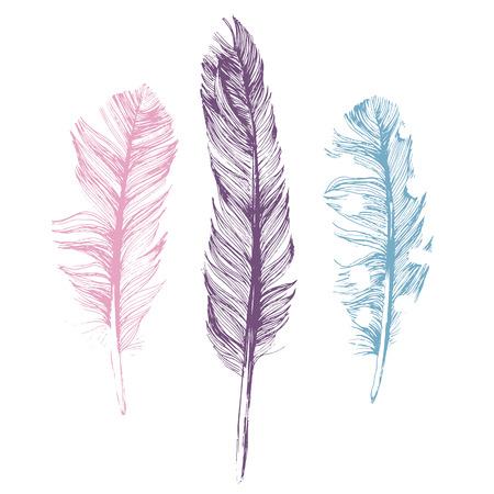 흰색 배경에 3 손으로 그린 깃털