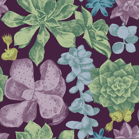 succulent: hand drawn seamless pattern with succulents