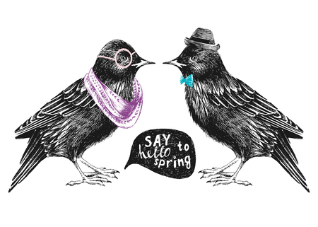 feathering: dressed up hand drawn starling couple
