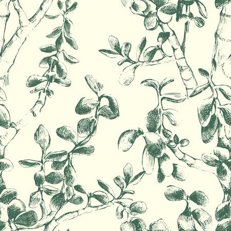 Hand drawn jade plant seamless pattern 矢量图片