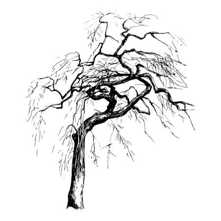 Ręcznie rysowane drzewa sylwetka na białym tle