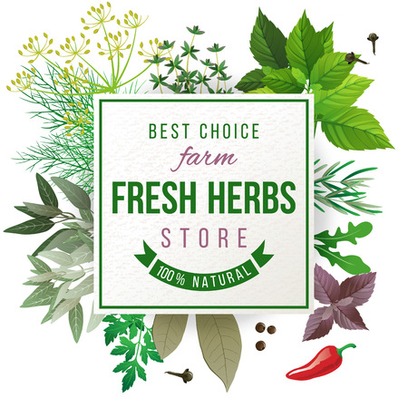 fresh herbs: Fresh herbs store emblem - easy to use in your own design