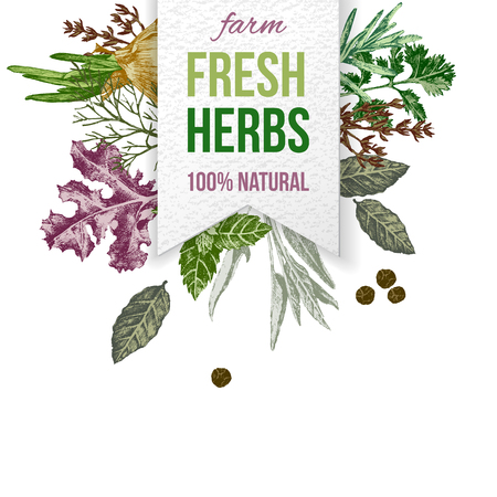 Paper emblem with type design and hand drawn herbs and spices