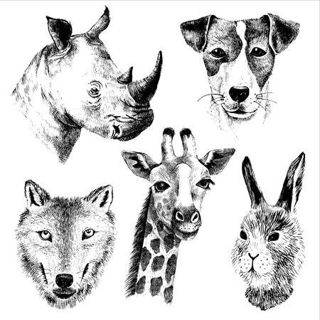 hand drawn vector animals set Illustration