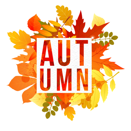 bage: banner with autumn leaves and type design