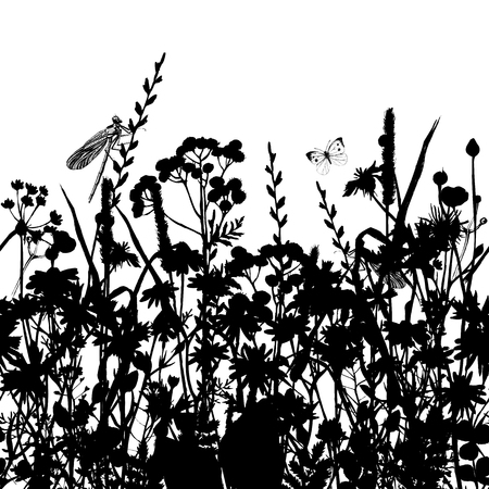 meadow: Hand drawn seamless border with black and white herbs and flowers