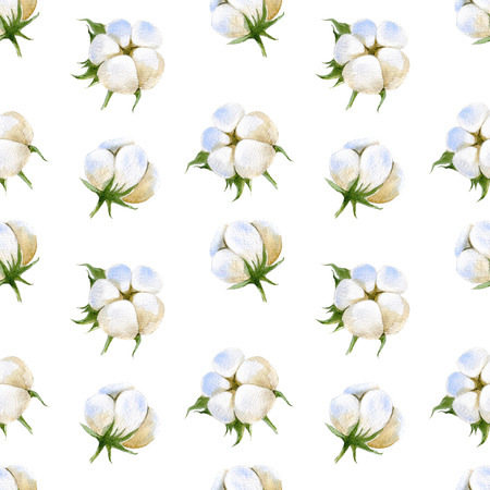 cotton plant: seamless pattern with watercolor cotton plant on white background Stock Photo