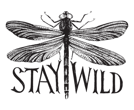 anisoptera: Black dragonfly with hand drawn lettering - stay wild