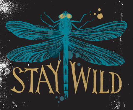 anisoptera: Background with dragonfly and hand drawn lettering - stay wild