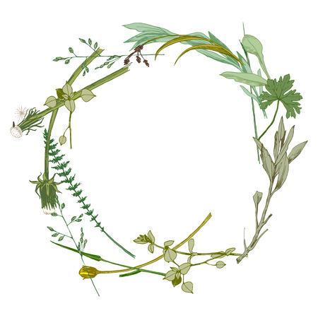 Wieniec wykonany z ręcznie rysowane dzikie zioła