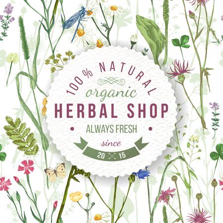 plantas medicinales: herboristería emblema redondo sobre las hierbas y flores silvestres patrón. Fácil de usar en sus diseños orgánicos y respetuosos con el ecosistema