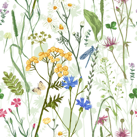 Hand drawn seamless pattern with colorful herbs and flowers Vectores