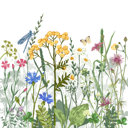 Hand drawn border with colorful herbs and flowers