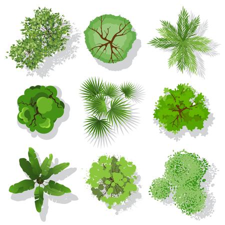 Árboles tapa visión para su propio diseño del paisaje Ilustración de vector