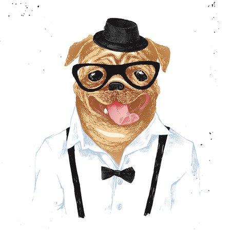 Colorful hand drawn dressed up pug in hipster style