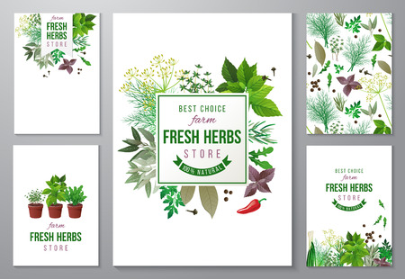 bright backgrounds with fresh herbs