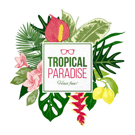 Zomer achtergrond met tropische planten en bloemen