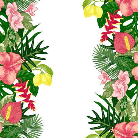 hand drawn tropical background  イラスト・ベクター素材