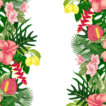 hand drawn tropical background Vettoriali