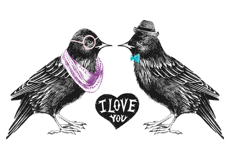 starling: Valentines day card with couple of starlings