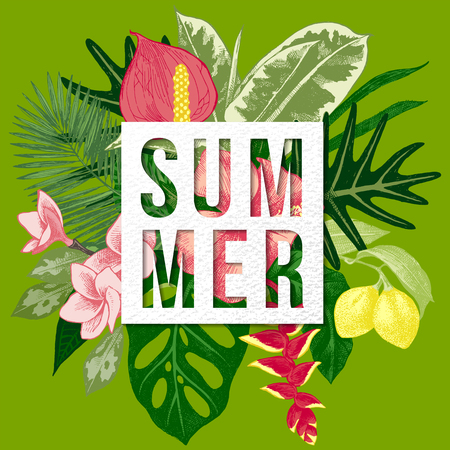 philodendron: Summer background with tropical plants and flowers