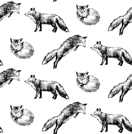 seamless pattern with hand drawn foxes Illustration