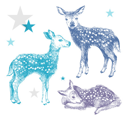 3 hand drawn colorful baby deers Çizim