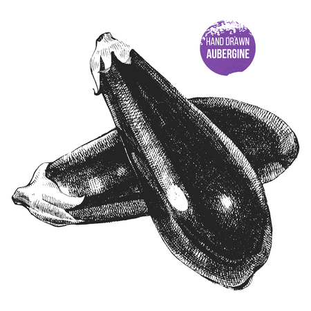 Hand drawn aubergine
