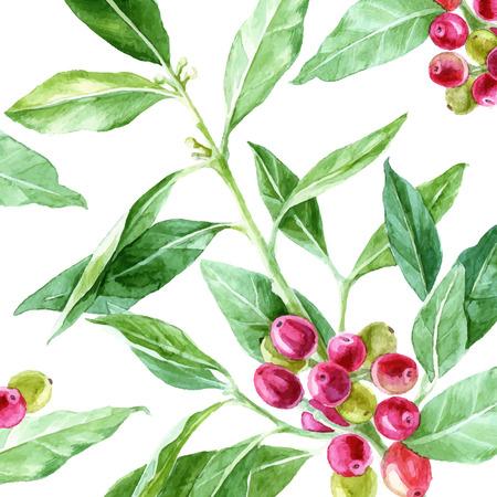 Achtergrond met hand getekende waterverf koffie plant