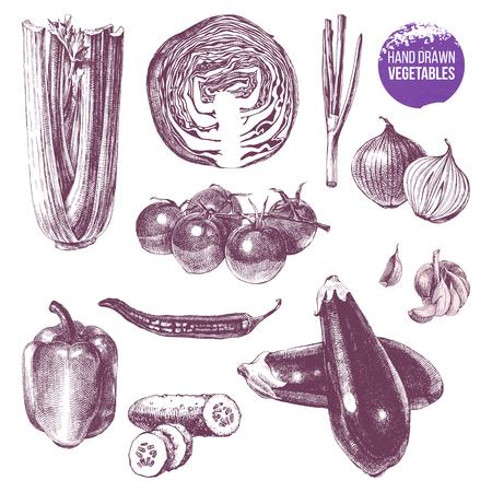 Hand drawn vegetables set Ilustração