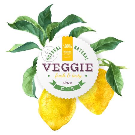 Comida vegetariana rodada emblema sobre fundo de ramo de árvore de limão Foto de archivo - 81583442