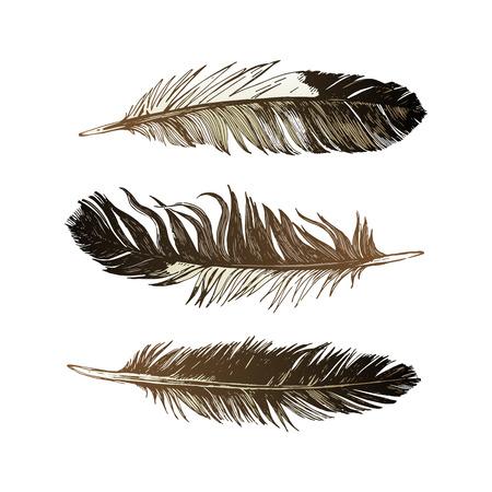 3 plumes noires et blanches dessinées à la main Banque d'images - 81890210