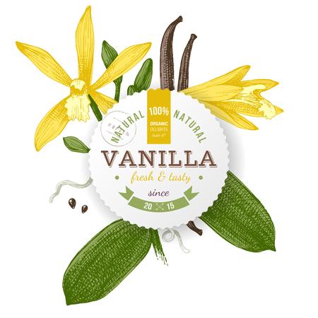 Etichetta con design di tipo e pianta di vaniglia Archivio Fotografico - 81996246