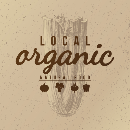 Local organic natural food background in vintage style over hand drawn celery. Vector illustration