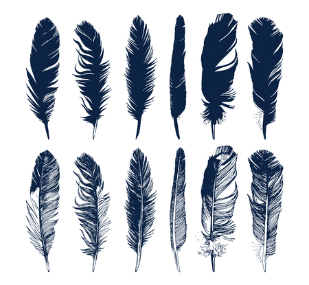 Hand drawn feathers and their silhouettes set on white background Illustration