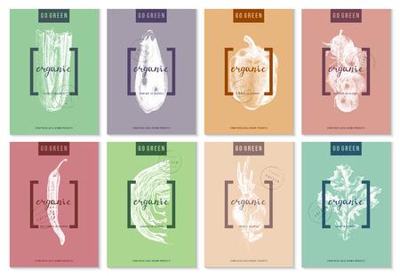 手で明るい 8 ポスター コレクションには、野菜が描かれています。ベクトル図