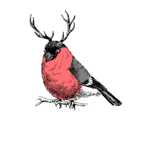 Bullfinch with deer horns Illustration