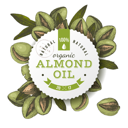 Emblema de aceite de almendra orgánico Foto de archivo - 86910907