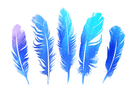 5 bright hand drawn feather set vector illustration. Great idea for T-shirt, invitation, or wedding design.