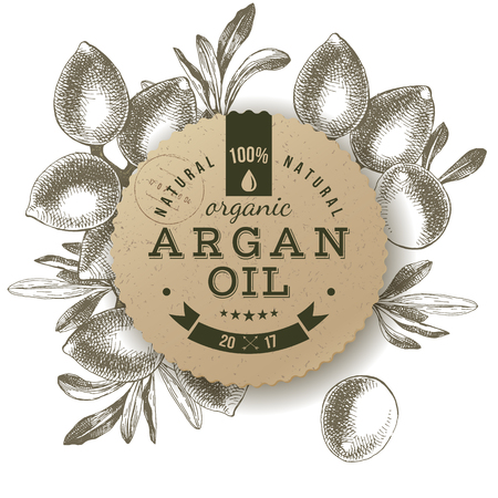 Argan oil label with type design over hand drawn nuts background vector illustration Illustration