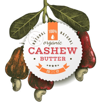 Cashew butter emblem over hand drawn colorful nuts branch. Vector illustration
