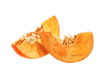 Pumpkin pieces on white background