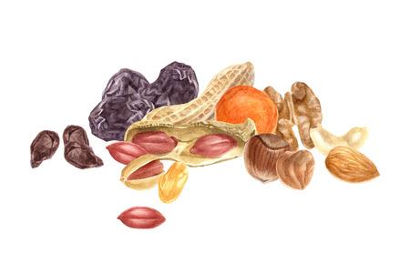견과류와 말린 과일 수채화 테두리