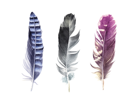 Hand drawn watercolor feather set