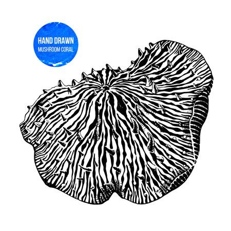Hand drawn mushroom anemone