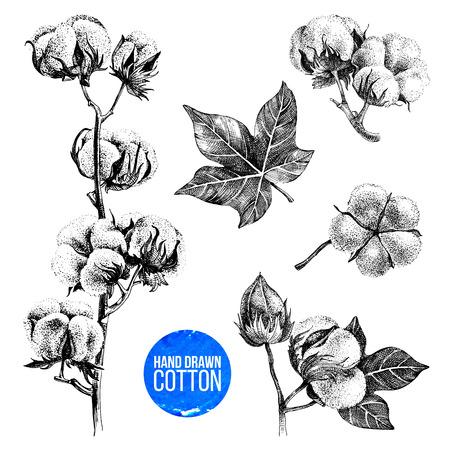 Conjunto de algodón dibujado a mano