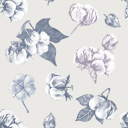 Seamless pattern with hand drawn cotton