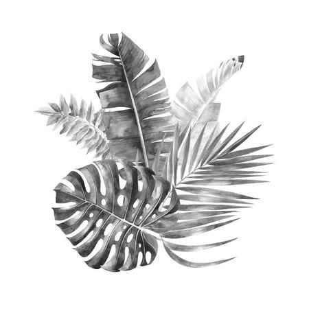 Grayscale jungle leaves bouquet Banco de Imagens